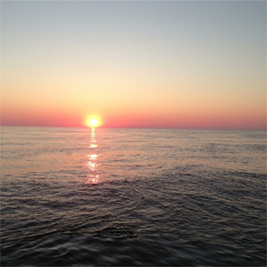 blackfish fishing montauk sunrise